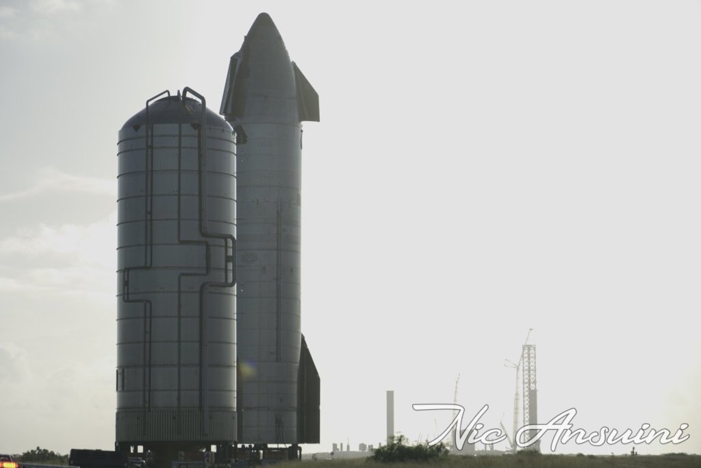 starship 20 moved to launch pad